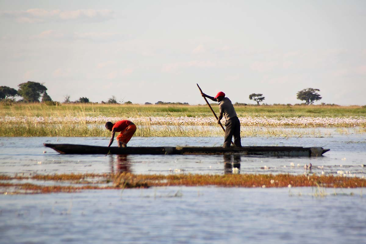 Chobe River Mokoro