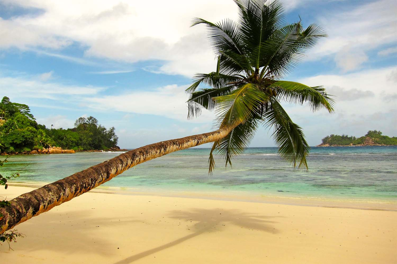 Mahe Island Beach Seychelles