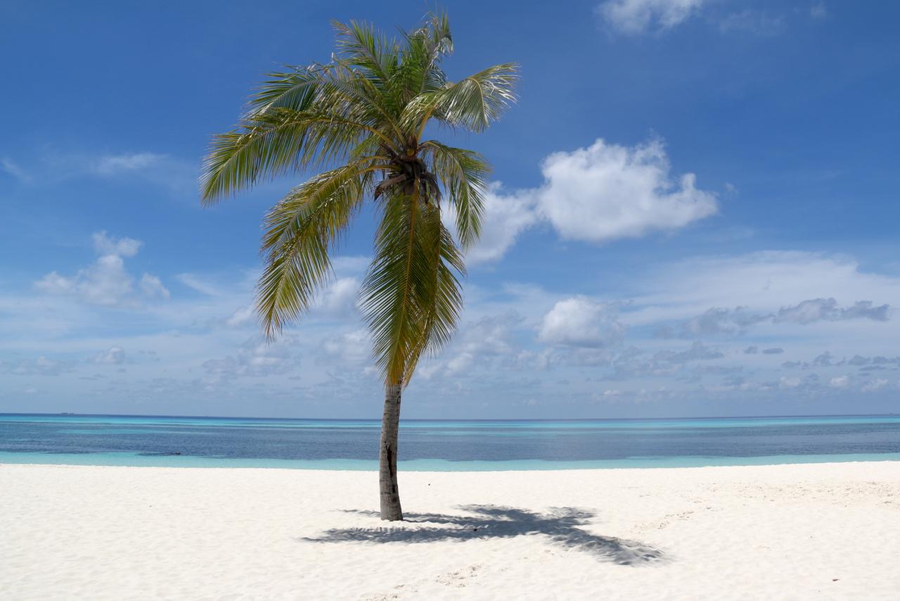 Typlical Kuredu Island