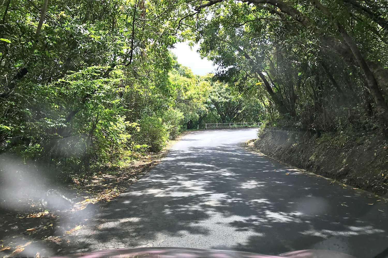 Southern Roads