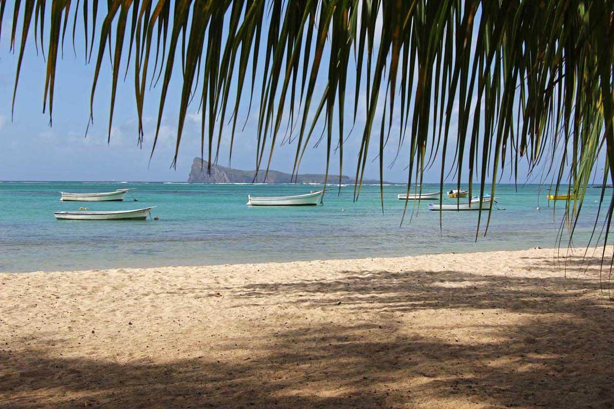 Perybere Mauritius