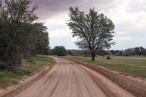 Green Kalahari Kgalagadi