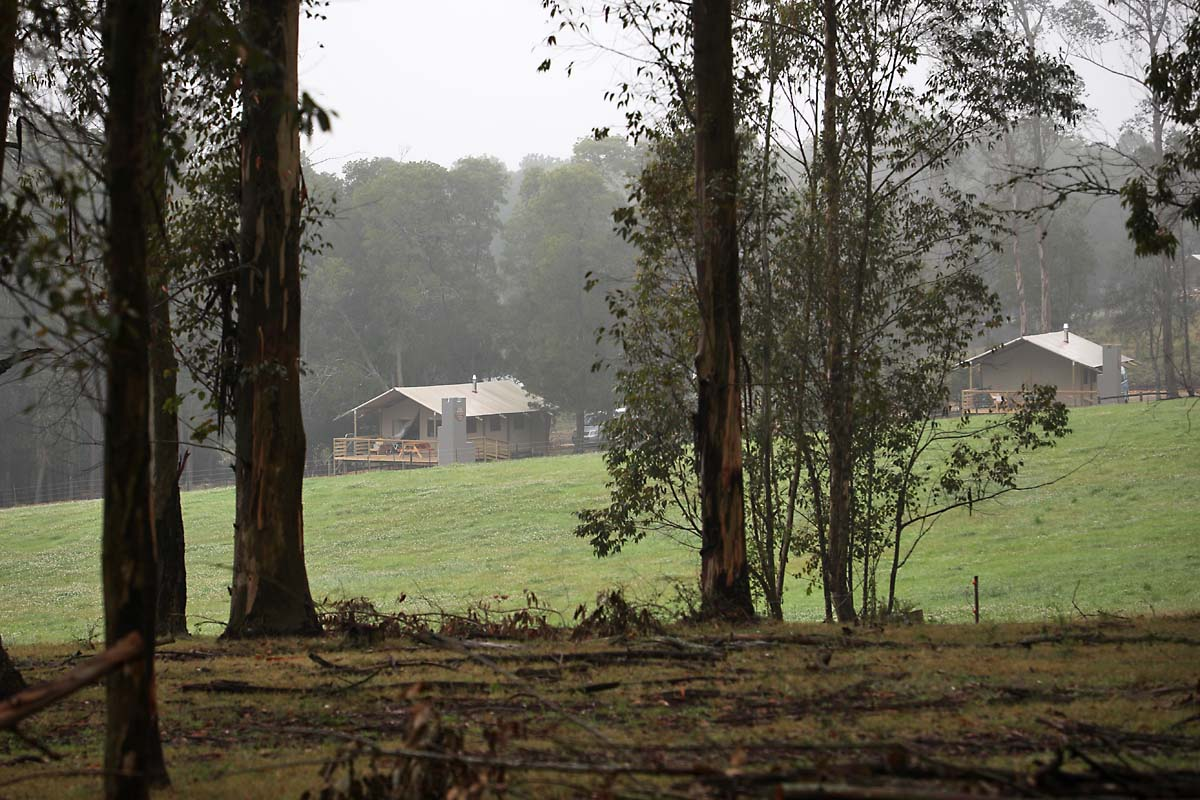 Oakhurst Tents